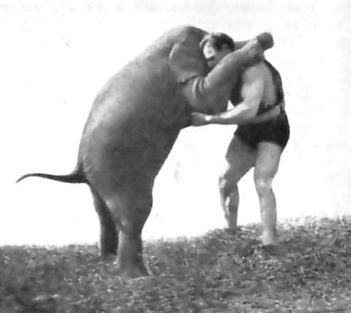 Fil Basıncı
